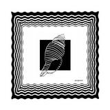 Bath Shells Square II Premium Giclee Print by Nicholas Biscardi