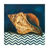 Elegance of the Sea I Premium Giclee Print by Patricia Quintero-Pinto