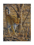 Leopard Walking Art by Peter Blackwell