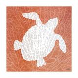 Sealife on Coral III Premium Giclee Print by Julie DeRice