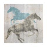 Equine I Premium Giclee Print by Dan Meneely