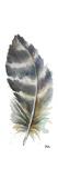 Watercolor Feather White VI Kunstdrucke von Patricia Pinto