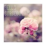 Hello Gorgeous Premium Giclee Print by Sarah Gardner