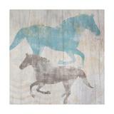 Equine II Premium Giclee Print by Dan Meneely