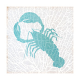 Sealife on Coral VI Premium Giclee Print by Julie DeRice