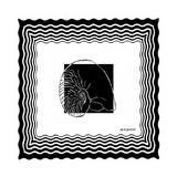 Bath Shells Square I Premium Giclee Print by Nicholas Biscardi