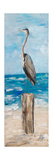 Among the Water I Premium Giclee Print by Julie DeRice