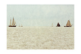 Sail Boats Posters by Kathy Mansfield