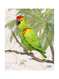 Another Bird in Paradise II Premium Giclee Print by Julie DeRice