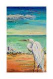 Great Egret II Posters par Patricia Pinto