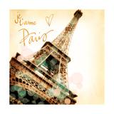 Je, t'aime Paris Premium Giclee Print by Emily Navas