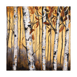 Birchwood Trees on Gold II Art by Patricia Pinto