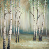 Late September Birch I Reproduction giclée Premium par Michael Marcon