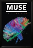 Muse-The Second Law Posters