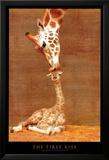 Det første kysset Posters