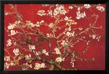 Almond Blossom - Red Poster van Vincent van Gogh