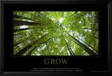 Wachstum, Englisch Kunstdruck