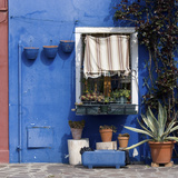 Pot Plants on Blue Painted Venice Building Exterior Photographic Print by Mike Burton