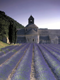 Abbey De Senanque, Provence, France Photographic Print by Marcel Malherbe