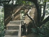 Jungle House, Tepotzlan, Mexico. - Steps to Door and Wall Punctured by a Tree Photographic Print by Richard Bryant