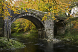 Autumn at Holne Bridge, Dartmoor, England Photographic Print by David Clapp