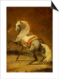 Dappled Grey Horse Prints by Théodore Géricault