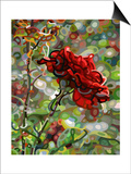Last Rose of Summer Poster by Mandy Budan