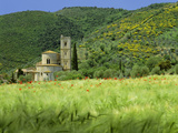 Abbey of Sant' Antimo, Near Montalcino, Tuscany. Exterior Photographic Print by Joe Cornish