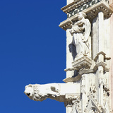 Statue of a Man and a Lion Gargoyle, Architectural Detail, Siena, Italy Photographic Print by Mike Burton