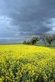 Oberlausitz, Landscape - Germany Photographic Print by Barbara Optiz