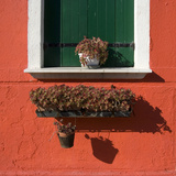 Detail: Window with Green Shutters Photographic Print by Mike Burton