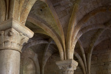 Abbaye Du Thoronet, Var, Provence, 1160 - 1190. Vaulting in Chapter House Photographic Print by Richard Bryant