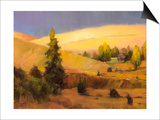 Homeland II Prints by Steve Henderson