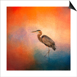 Sunset Heron Prints by Jai Johnson