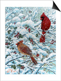 Winter Cardinal Painting Prints by Jeff Tift