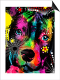 American Pit Bull Posters by Mark Ashkenazi