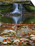 Autumn waterfall in McCormics Creek State Park, Indiana, USA Poster by Anna Miller