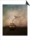 Black Capped Chickadee on a Vase Posters by Jai Johnson