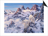 Among the Clouds - Mtn. Goat Poster by Jeff Tift