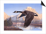 Goose Mtn Art by Rusty Frentner