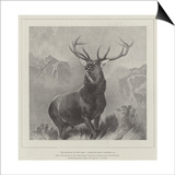 The Monarch of the Glen Prints by Edwin Landseer