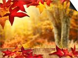 Scenic Autumnal View Prints by  Smileus