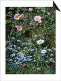 Wild Roses, Forget-Me-Nots and Daisies Prints by Otto Franz Scholderer