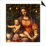 Virgin of the Rose Bush Posters by Bernardino Luini