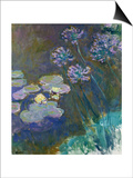 Waterlilies and Agapanthus, 1914-17 Prints by Claude Monet