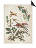 Ornament. Chinoiserie. Flowers and Birds., 1770 Prints by Jean Baptiste Pillement