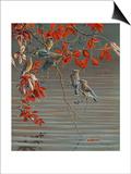Autumn Harvest - Cedar Waxwing Posters by Wilhelm Goebel