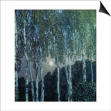 Birch Trees in the Evening Light, 1908-10 Prints by Alexander Jakowlev Golowin