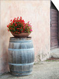 Europe, Italy, Tuscany. Flower Pot on Old Wine Barrel at Winery Plakater af Julie Eggers