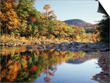 New Hampshire, White Mts Nf, Sugar Maple Reflect in the Swift River Prints by Christopher Talbot Frank